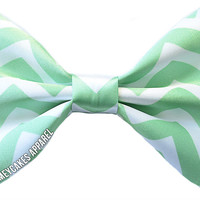 Sea Foam Green Chevron Hair Bow