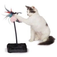Cat is Good Chirping Teaser Cat Toy