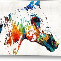 Colorful Horse Art - Wild Paint - By Sharon Cummings Canvas Print