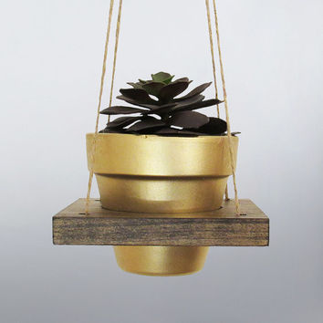Hanging Planter, Succulent Planter, Air Planter, Hanging Pot, Terracotta Pot, Modern Planter, Gold Planter, Wood Planter, Rustic Planter