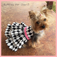 Harlequin and Pink Dog Dress Customizable to your dogs measurements!  Size  XXS XS Small