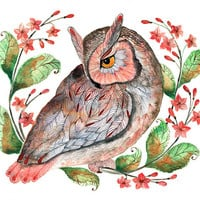 Daydreaming - (owl and flowers) bird watercolor art print, size 10x8, LIMITED EDITION 16/100 (No. 42)