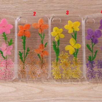 iPhone 6 case iPhone 6 plus Pressed Flower, iPhone 5/5s case, iPhone 4/4s case, 5c case Galaxy S4 S5 Note 2 note 3 Real Flower case NO:F158