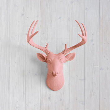 The MINI Virginia Salmon Faux Taxidermy Resin Deer Head Wall Mount | Salmon Stag w/ Colored Antlers