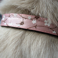 Breakaway Cat Collar Free Shipping Pink by TheWhiteSchnauzer