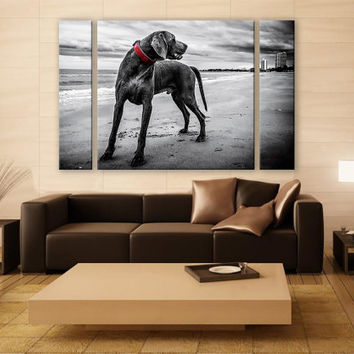 B&W Weimaraner Portrait Canvas Print 3 Panels Print Animal Wall Decor Fine Art Photography Repro Print for Home and Office Wall Decoration