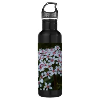 Umbrella Plant Floral Stainless Steel Water Bottle