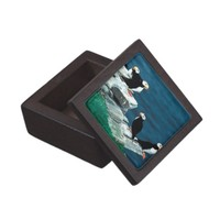 Alaska Puffins Feathered Colorful Birds Gift Box