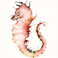 Seahorse in Corals Large Archival print