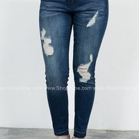 Sal Distressed Cropped Skinny Denim