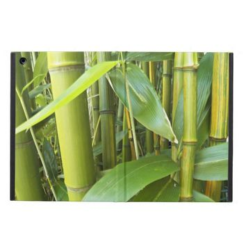 Asian Bamboo Plants Photo iPad Air Covers