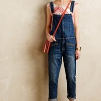 Current/Elliott Boyfriend Overalls Loved