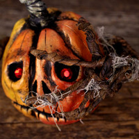 Jack O'Lantern Halloween Decoration, Paki the Pumpkin Witnessing Halloween Night