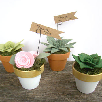 Felt Succulent Wedding Party Favor, Place Card Holder, Table Number Holder, Terracotta White Gold, Wedding Shower Favor, Gift, Table Decor
