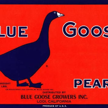 An original fruit crate label for Blue Goose Pears, USA, c.1940