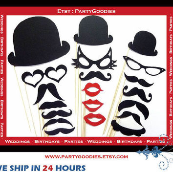 Photo Booth Props Crazy Cat Lady 20 Piece Set by PartyGoodies