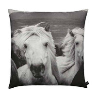 By Nord Icelandic Horses Large Cushion | Mora Approved