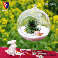 YYGLASS Brand Cute Handmade Hot Clear Glass Globes With 1 Hole Hanging Plant Terrarium Vase Wedding Home Decoration