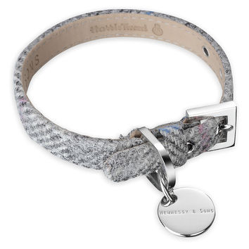 Dog Collar, Silver Gray, Collars