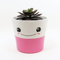 Succulent Planter, Succulent Pot, Cute Face Planter, Plant Pot, Terracotta Pot, Flower Pot, Indoor Planter, Kawaii Planter, Pink
