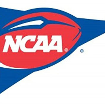 College Sports Fan Premium Team Logo 3'x5' Flag Banner