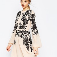ASOS Lace Placed Embroidered Mini Dress