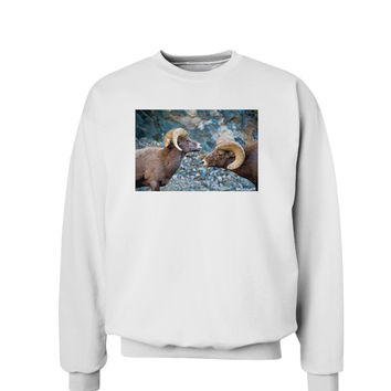 Two Bighorn Rams Sweatshirt