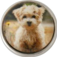 Chunk Snap Charm Puppy Art Glass Cover 18 mm