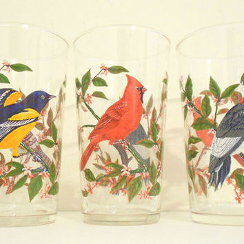 Vintage Juice Glass Set of 3 French Bird by TheRetroStudio