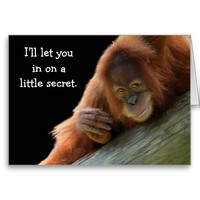 Cute Young Orangutan Party Invitation Greeting Cards