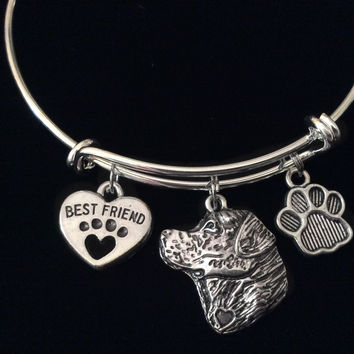 Labrador Retriever Dog My Best Friend Paw Print Silver Expandable Charm Bracelet Dog Lover Gift Pet Bangle
