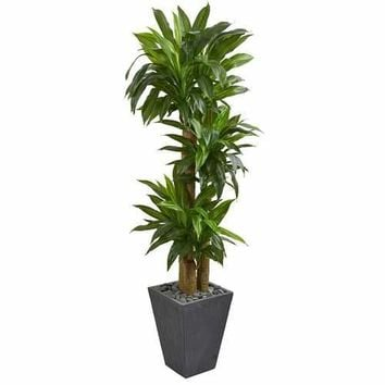 5.5 Cornstalk Dracaena Artificial Plant in Slate Planter (Real Touch) Silk Plants