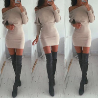Winter Hot Sale Long Sleeve Women's Fashion One Piece Dress [6281467652]