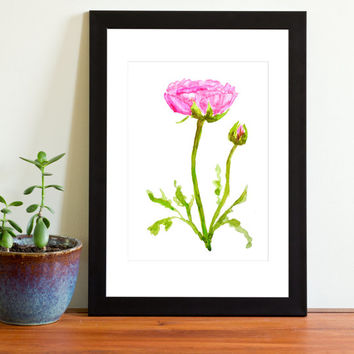 Vintage Botanical Print Watercolor Print 1 pink ranunculus with bud floral art wall decor wall art digital  watercolor art valentine gift