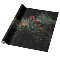 Chritsmas berries and fir wrapping paper