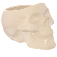 Life From Death Skull Plant Pot in Bone White