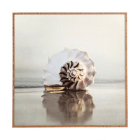 Bree Madden Seashell Framed Wall Art