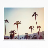 Palm Trees in the Desert, Palm Springs - Print - Fine Art Photography - Home Decor