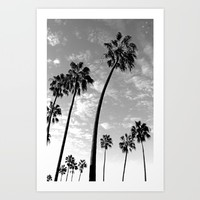 Palm Trees Pacific Beach Art Print by Derek Delacroix