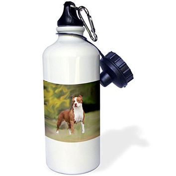 3dRose wb_4239_1 American Pit Bull Terrier Sports Water Bottle, 21 oz, White