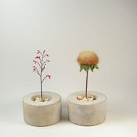 Mini Round Concrete Pot set of 2 by roughfusion on Etsy