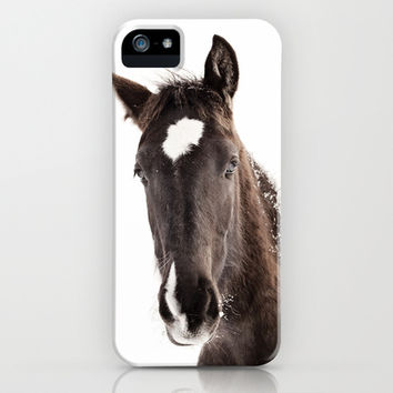 Horse Portrait with White Background iPhone & iPod Case by Apples and Oats Photography