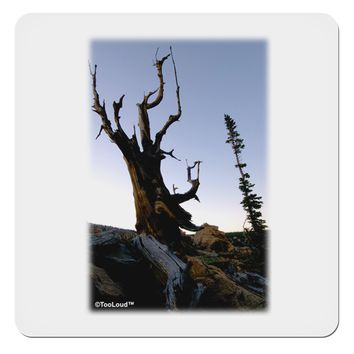 "Colorado Mountain Scenery 4x4"" Square Sticker by TooLoud"