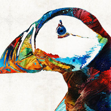 Colorful Puffin Bird Art  PRINT from Painting Northern Birds Feathers Primary Colors CANVAS Ready Hang Large Artwork Maine Beach Atlantic