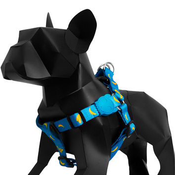 Banana Shake | Dog Harness