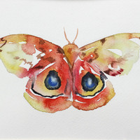 moth . giclee fine art print of watercolor painting