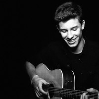 Shawn Mendes Black and White Poster
