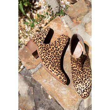 Pronto Ankle Boot, Leopard | Coconuts by Matisse