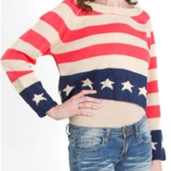 The Classic USA Flag Cropped Sweater SW1134