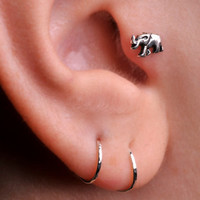 ELEPHANT / TRAGUS /  Cartilage stud / Ring / Sterling Silver. Handcrafted